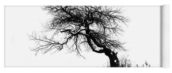 The Apple Tree Yoga Mat