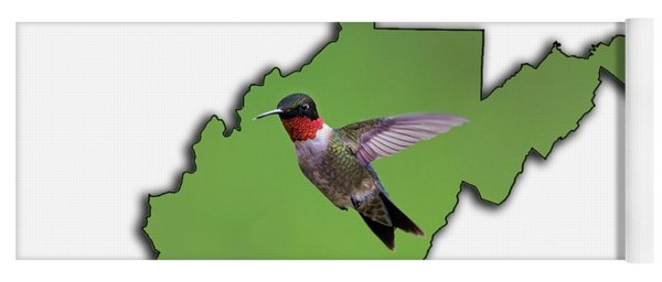 The Ruby-throated Hummingbird Yoga Mat
