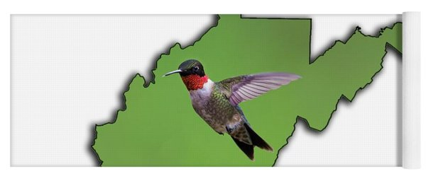 Yoga Mat featuring the photograph The Ruby-throated Hummingbird by Dan Friend