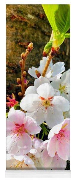 White Apple Blossom In Spring Yoga Mat