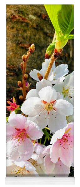 White Apple Blossom In Spring Yoga Mat