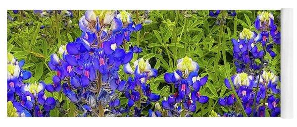 Wild Bluebonnets Blooming Yoga Mat