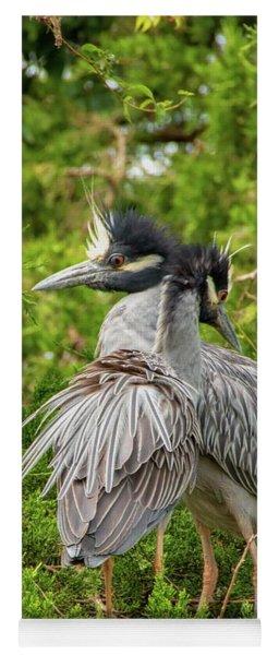 Yellow-crowned Night Heron Yoga Mat