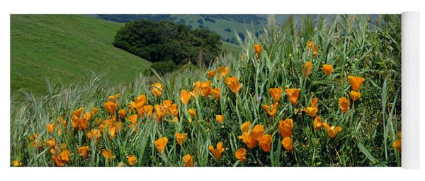 1a6493 Mt. Diablo And Poppies Yoga Mat