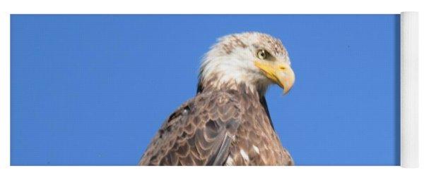 Bald Eagle Juvenile Perched Yoga Mat