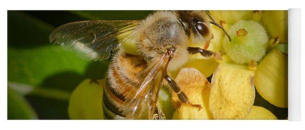 Bees Gathering From Pittosporum Flowers Yoga Mat