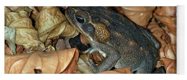 Cane Toad Yoga Mat