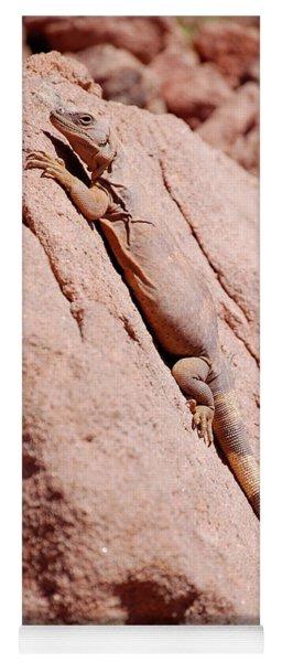Chuckwalla, Sauromalus Ater Yoga Mat