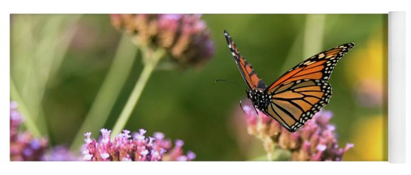 Flight Of The Monarch 1 Yoga Mat