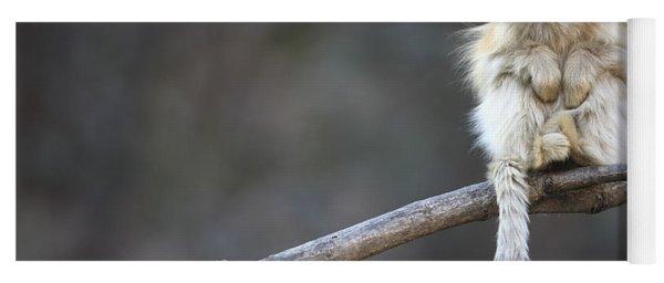 Golden Snub-nosed Monkey Rhinopithecus Yoga Mat