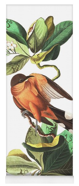 Mangrove Cuckoo Yoga Mat