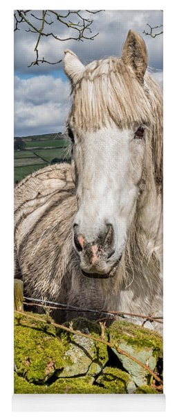Rustic Horse Yoga Mat