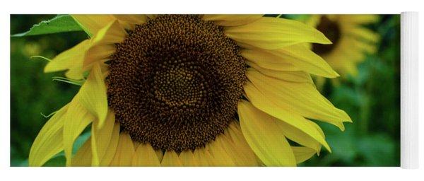 Sunflower Fields Yoga Mat