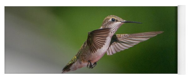Female Ruby Throated Hummingbird Yoga Mat