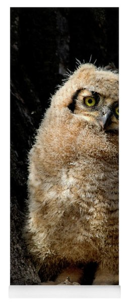 Great Horned Owlet Yoga Mat