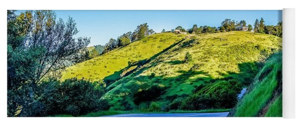 Yoga Mat featuring the photograph Muir Woods Forest Drive By Nature Near San Francisco by Alex Grichenko