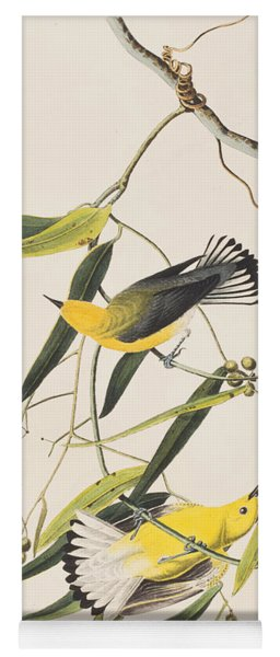 Prothonotary Warbler Yoga Mat