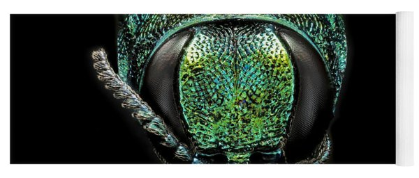 Emerald Ash Borer Yoga Mat