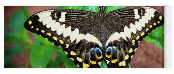 Butterfly Yoga Mat