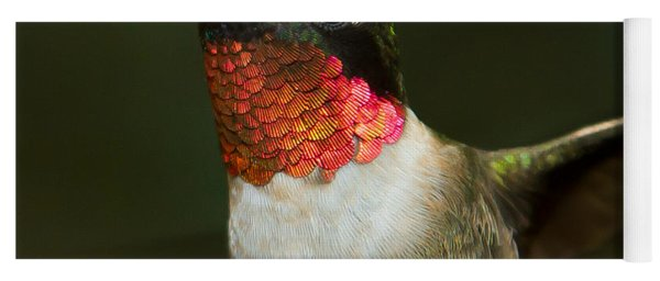 Yoga Mat featuring the photograph Ruby-throated Hummingbird by Robert L Jackson