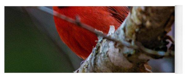A Cardinal In Spring   Yoga Mat