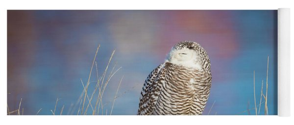 A Colorful Snowy Owl Yoga Mat