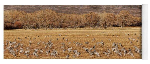 A Field Of Cranes Yoga Mat