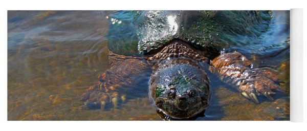 A Fishy Encounter - Snapping Turtle - Chelydr Serpentina Yoga Mat