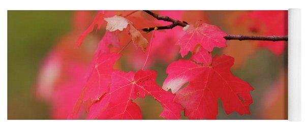 A Flash Of Autumn Yoga Mat