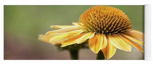 A Golden Echinacea -  Yoga Mat