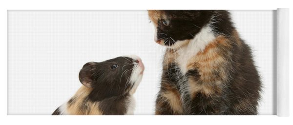 A Guinea For Your Thoughts Yoga Mat