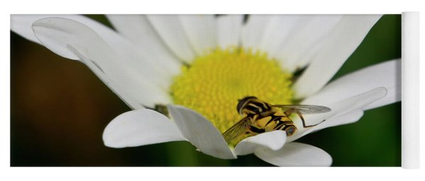 A Hoverfly And A Daisy Yoga Mat