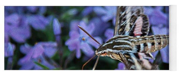 A Hummingbird Moth Yoga Mat