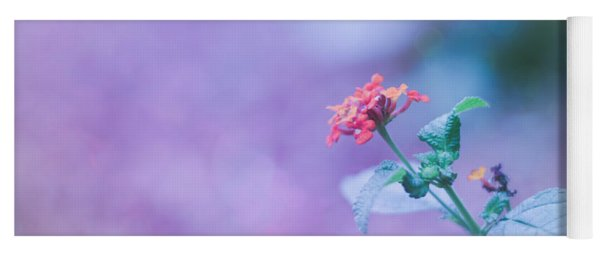 A Little Softness, A Little Color - Macro Flowers Yoga Mat