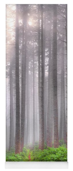 A Path In The Forest Yoga Mat