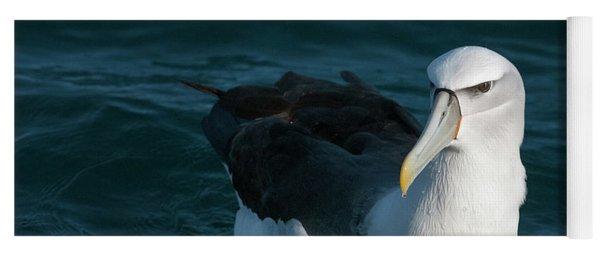 A Portrait Of An Albatross Yoga Mat