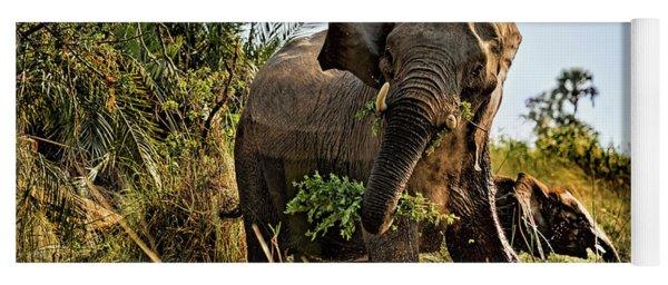 A Protective Mama Elephant With Calf  Yoga Mat