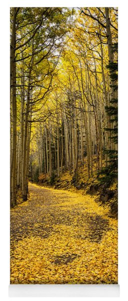 A Stroll Among The Golden Aspens  Yoga Mat
