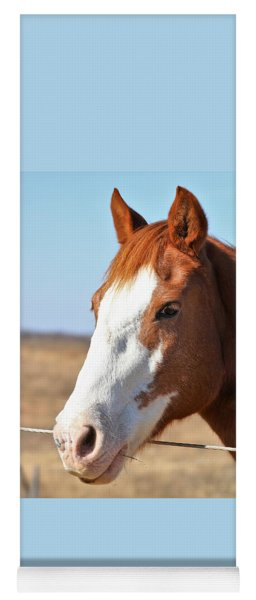 A Sweet Face - Horse Portrait Yoga Mat