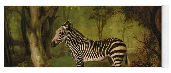 A Zebra Yoga Mat