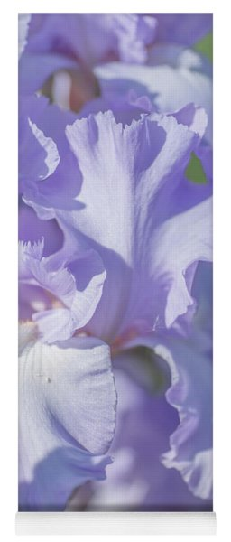 Absolute Treasure Closeup 2. The Beauty Of Irises Yoga Mat