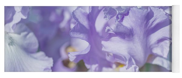 Absolute Treasure Closeup. The Beauty Of Irises Yoga Mat
