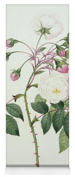 Adelia Aurelianensis Yoga Mat