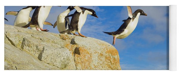 Adelie Penguins Jumping Yoga Mat