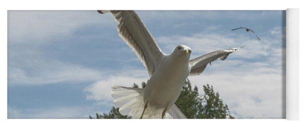 Adult Seagull In Flight Yoga Mat