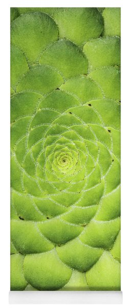 Aeonium Tabuliforme Pattern Yoga Mat