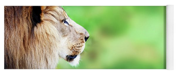 African Lion Face Closeup Web Banner Yoga Mat