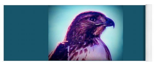 Ak-chin Red-tailed Hawk Portrait Yoga Mat