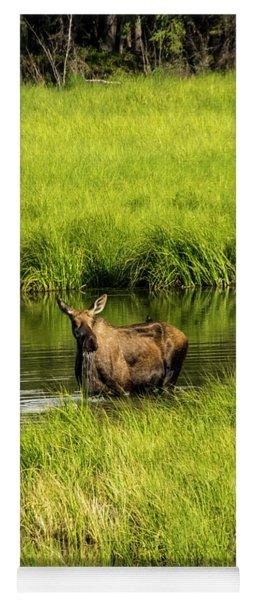 Alaskan Moose Yoga Mat