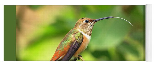 Yoga Mat featuring the photograph Allen's Hummingbird Tongue by Eyes4Nature